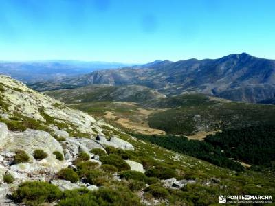 Torozo-Sierra de Gredos-Cinco Villas;